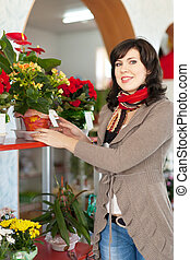 woman in flower shop - Woman chooses begonia in a flower...