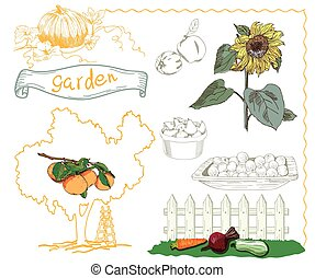 horticulture - set of vector sketches on the theme of...