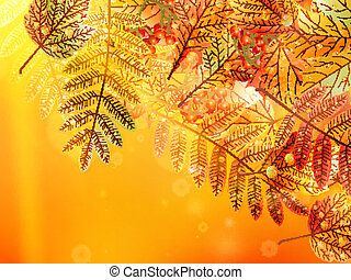 Autumn foliage background.