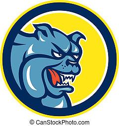 Angry Bulldog Mongrel Head Circle Cartoon