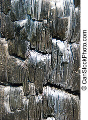 Charcoal surface texture. - A charcoal surface texture from...