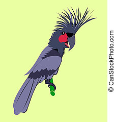 Cartoon animal ,Cockatoo , flat coloring style vector