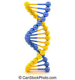 yellow blue DNA molecule on a white background