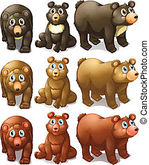 Collection of bears - Illustration of different type of...