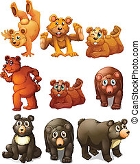 Cute bear movements - Illustration of different positions of...