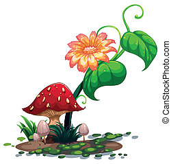 A flowering plant and mushrooms - Illustration of a...