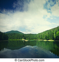 Carpathian mountain lake - Carpathian mountains summer...