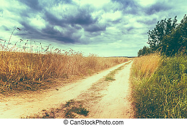 Rural Countryside Road Through Fields With Wheat - Road In...