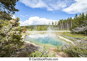 Yellowstone National Park - Geyser Pool in Yellowstone...