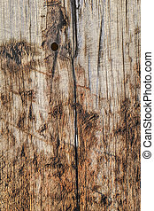 Old Wooden Railroad Sleeper Texture - Old, weathered, rotten...