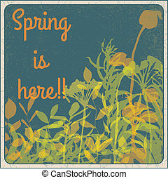 Spring is here!!