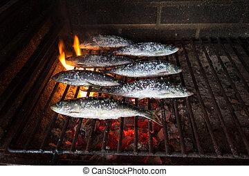 grelhados, sardinhas, quentes, Carvão