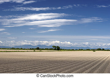 Field - soil of field in spring without plants