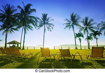 sandstrand,  deckchairs