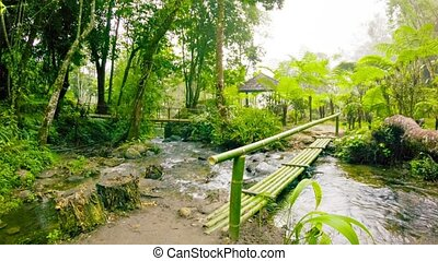 Small bamboo bridge on the tourist trail. Thailand, Chiang...