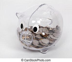 透明, 銀行, 小豬