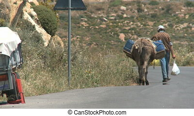 Donkey transport - Man is walking with his donkey on the...