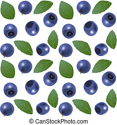 Seamless blueberry background - Seamless white background...