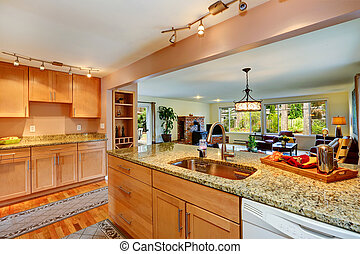 House with granite tops - Bright kitchen room with light...