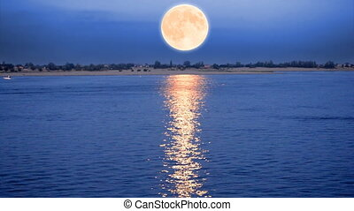 Full moon - Beautiful night scene with the full moon rising...