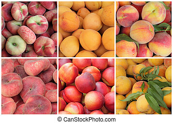 assorted peaches, apricots and  nectarines fruits