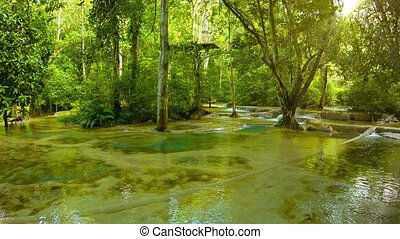 Creek near Kouang Si Waterfall, Laos, Luang Prabang - Video...