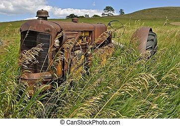 Tractor hidden in long grass - Long grass grass is growing...