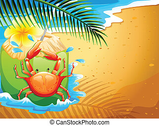A beach with a refreshing coconut drink and a crab -...