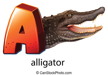 A letter A for alligator - Illustration of a letter A for...
