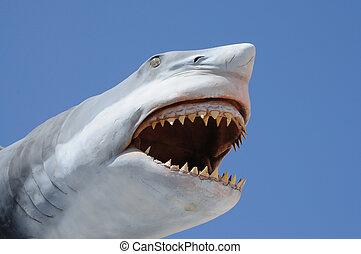 modèle, dangereux, requin, ouvert, bouche