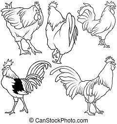 Rooster Set 2 - black hand drawn illustration