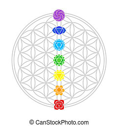Flower of Life Chakras White - Seven main chakras match...