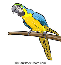 Macaw - Editable vector illustration of a macaw parrot in...
