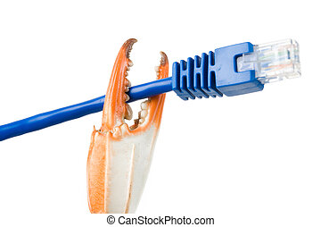 Crab Claw and Network Cable with white background