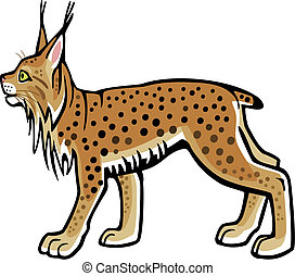 Lynx - vector illustration of a lynx standing side view