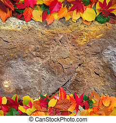 autumn leaves background - colorful autumn leaves on grungy...