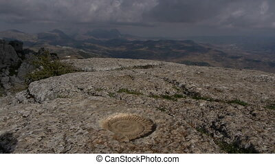 ammonite, embedded in the rock in the Torcal de Antequera,...