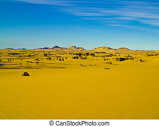 Sahara Desert Algeria