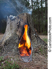 Contained Fire - Fire that is inside the middle of a hollow...
