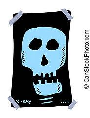 doodle x-ray skull