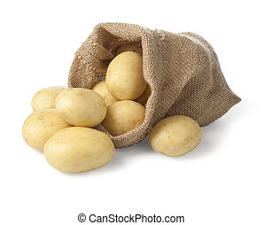 potatos - Ripe potatoes in burlap sack isolated on white...