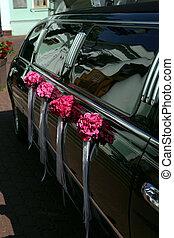 étendue, noir,  limousine