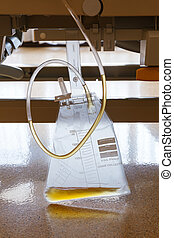 Urine collection bag - Close up plastic urine collection bag...