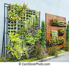 Vertical garden - Beautiful vertical garden in city around...