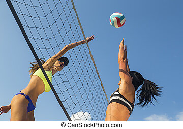 Female Beach Volleyball Players - Two female athletes...