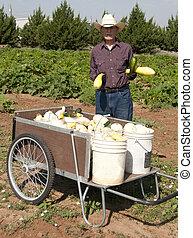 Ninety-One year old Squash Farmer