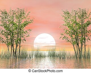 Bamboos by sunset - 3D render