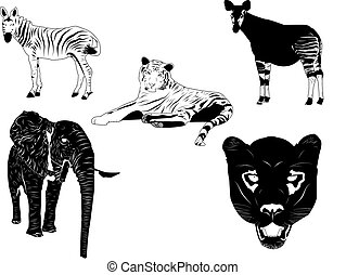 Wild animals - Vector of wild animals. Separate layers for...