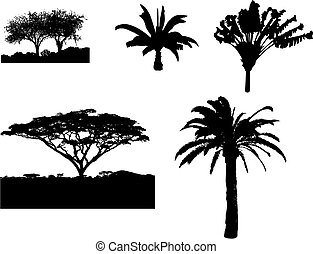 Tree silhouettes - Vector of different tropical trees...