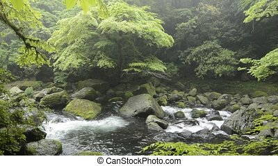 River among the rocks - River flowing among the rocks in...
